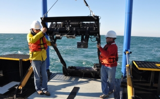 Offshore Operators Committee Zooplankton sampling