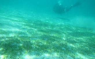 Cayman Islands Marine mining study