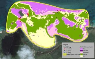 Puerto Rico Benthic Habitat Characterization