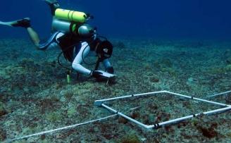 Marine Resources Assessment to Apra Harbor, Guam